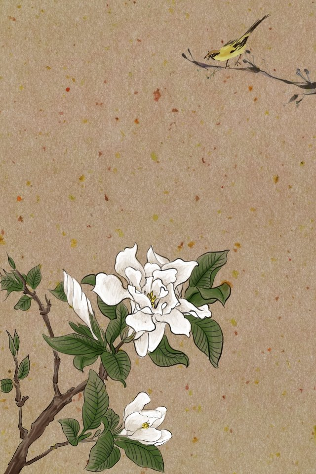 antiquity ink traditional chinese painting light color, Flowers, Plant, Gardenia illustration image