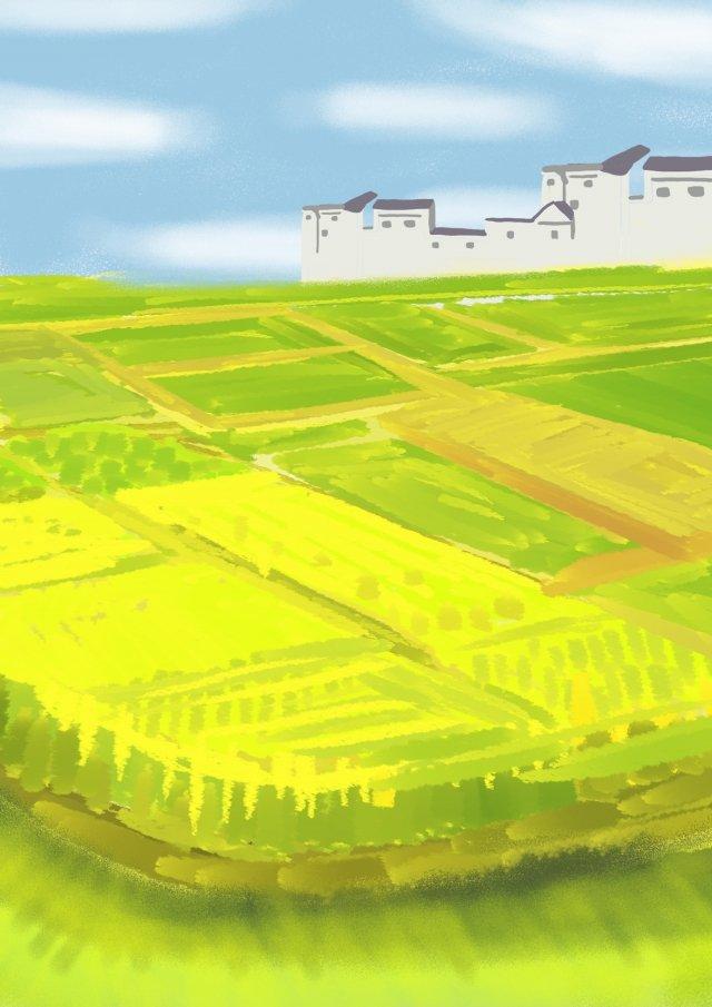 美しい新鮮な黄色の野原 イラスト素材