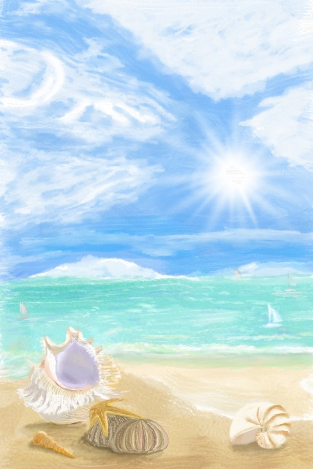 bright sunlight beach shell, Nautilus, Sea, Blue Sky illustration image