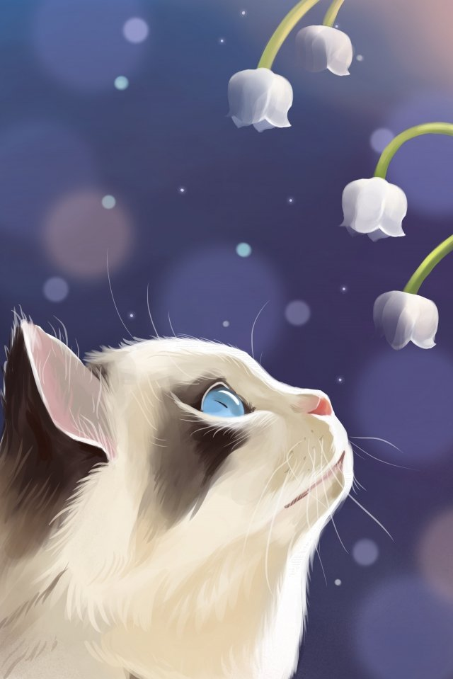cat cute pet flower lily of the valley llustration image illustration image