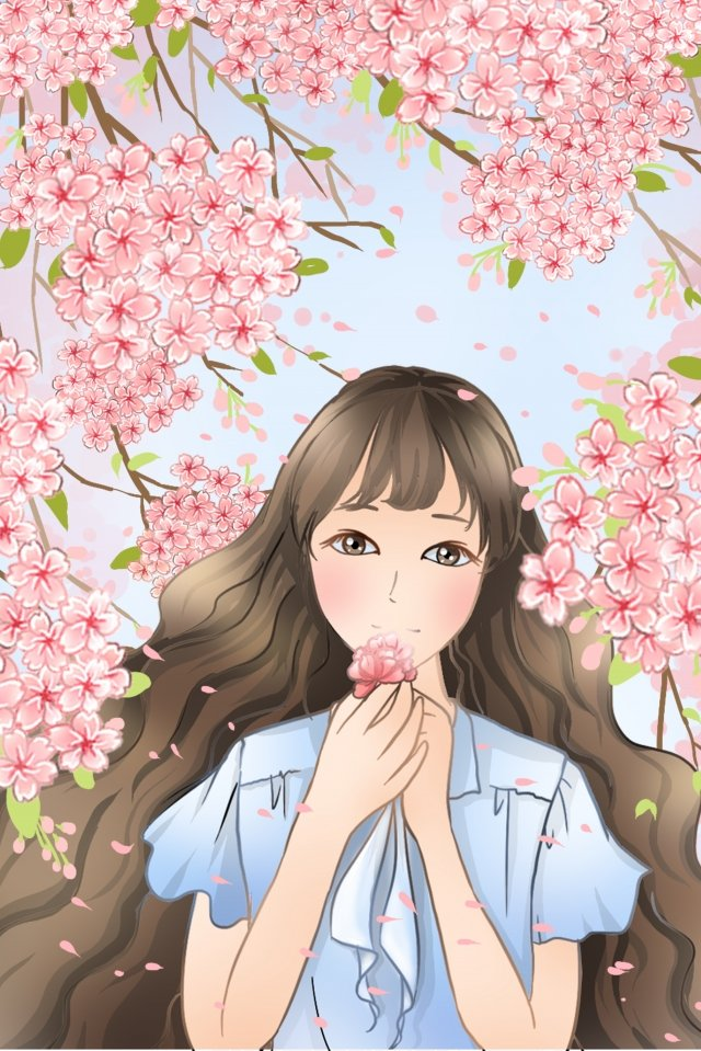 cherry blossoms spring spring equinox beauty, Pink, Flower, Illustration illustration image