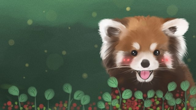 cute pet animal little panda moe llustration image illustration image
