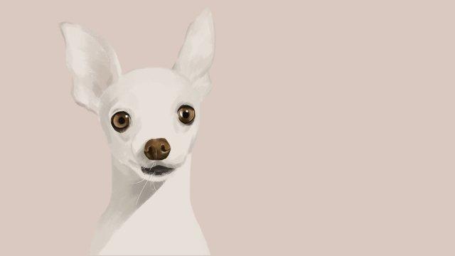 cute pet dog adorável bonito Material de ilustração