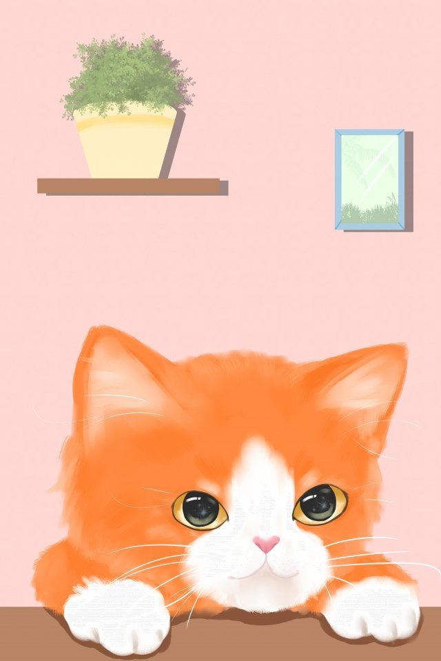 animal de compagnie chat orange chat image d'illustration