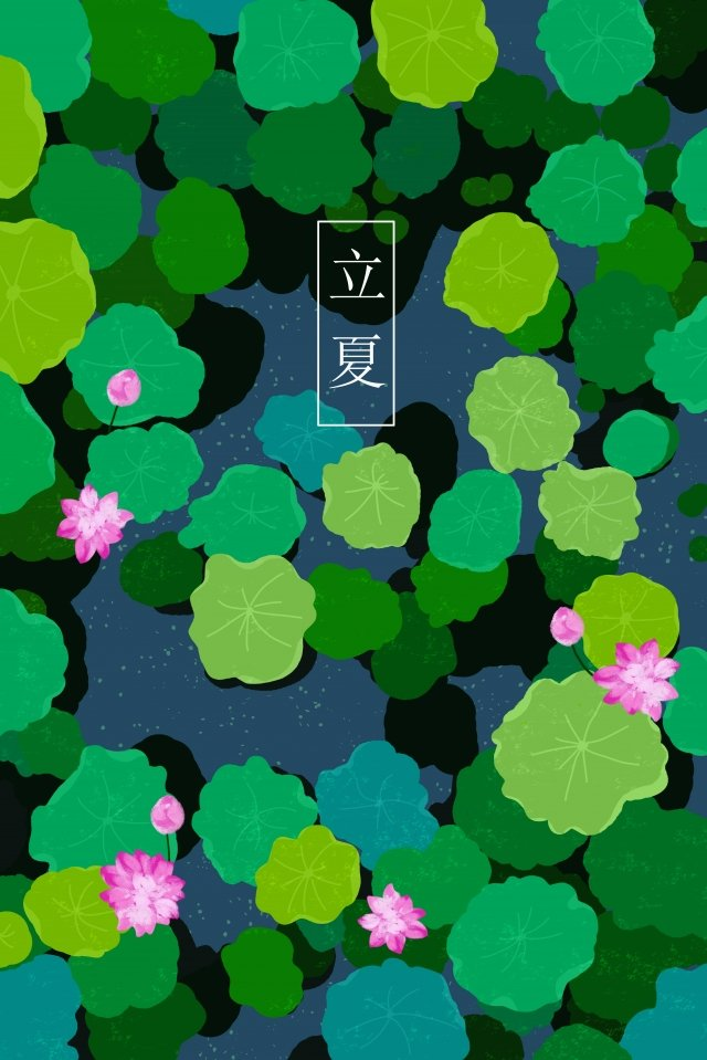early summer beginning of summer lotus summer, Lotus Pond, Twenty-four Solar Terms, Summer illustration image