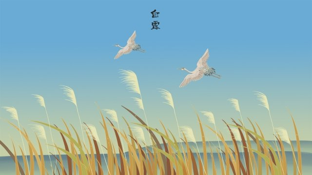 東の白い露神秘的な鳥露 イラスト素材