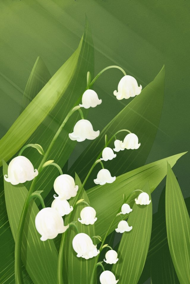 flower flowers flower painting plant, Lily Of The Valley, Valley, Watercolor illustration image