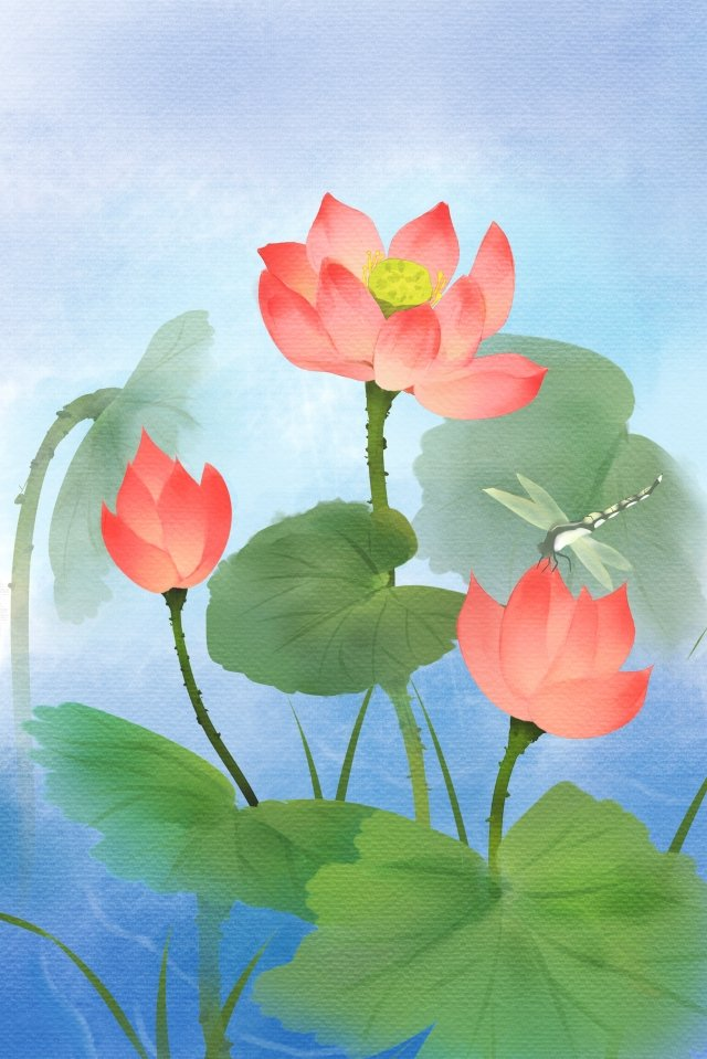 flower lotus watercolor hand painted llustration image illustration image