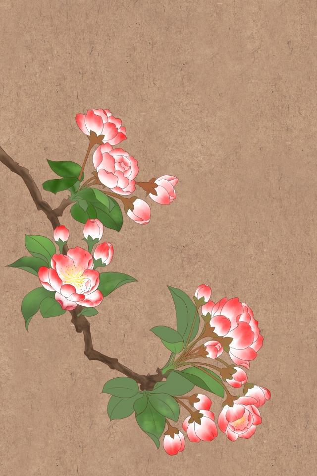 花イラスト棠棠海海伝統的な中国絵画 イラストレーション画像
