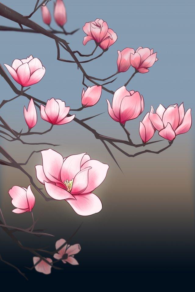 花ムランピンクイラスト イラスト画像