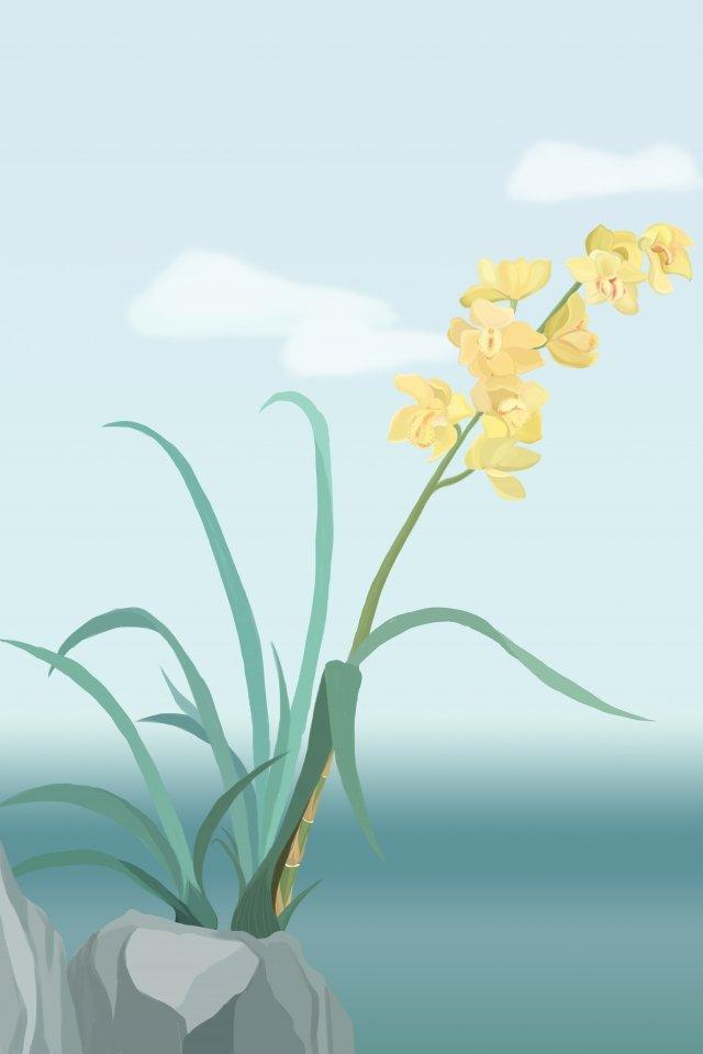 flowers orchid elegant fresh illustration image