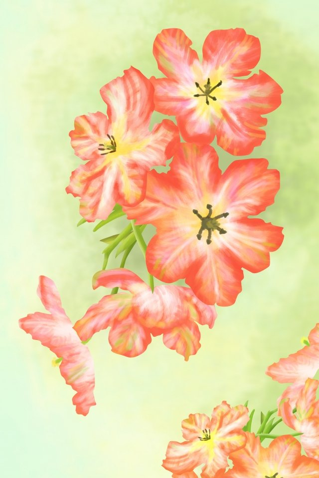 flowers plant red flower, Green Leaf, Grass, Natural illustration image