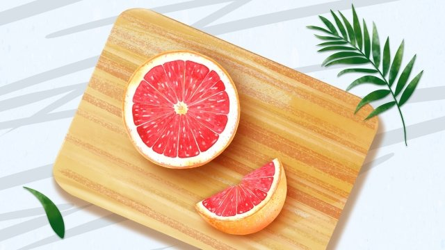 fruit illustration orange grapefruit llustration image