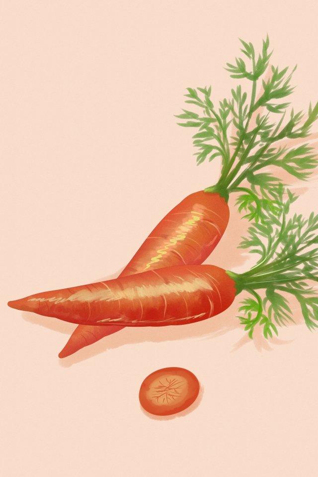 과일 야채 당근 무 삽화 소재 삽화 이미지