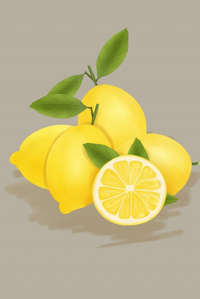 fruit vegetables lemon yellow, Drawn, Style, Fruit illustration image