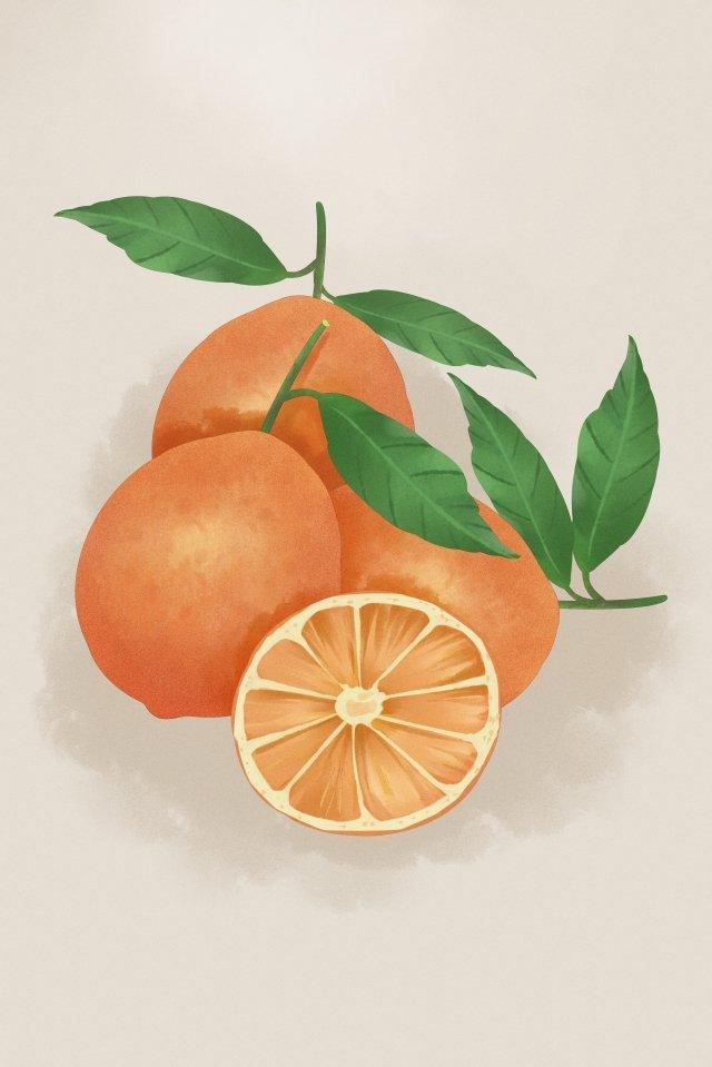과일 야채 오렌지 오렌지 삽화 소재 삽화 이미지