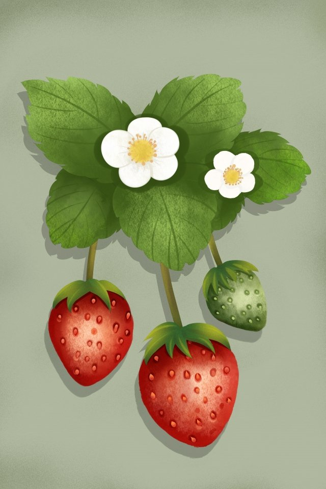 fruit vegetables strawberry flower, Style, Fruit, Vegetables illustration image