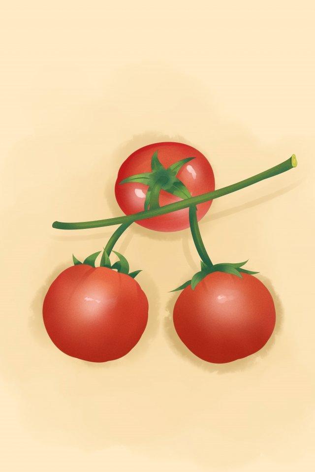 과일 야채 토마토 레드 삽화 소재 삽화 이미지