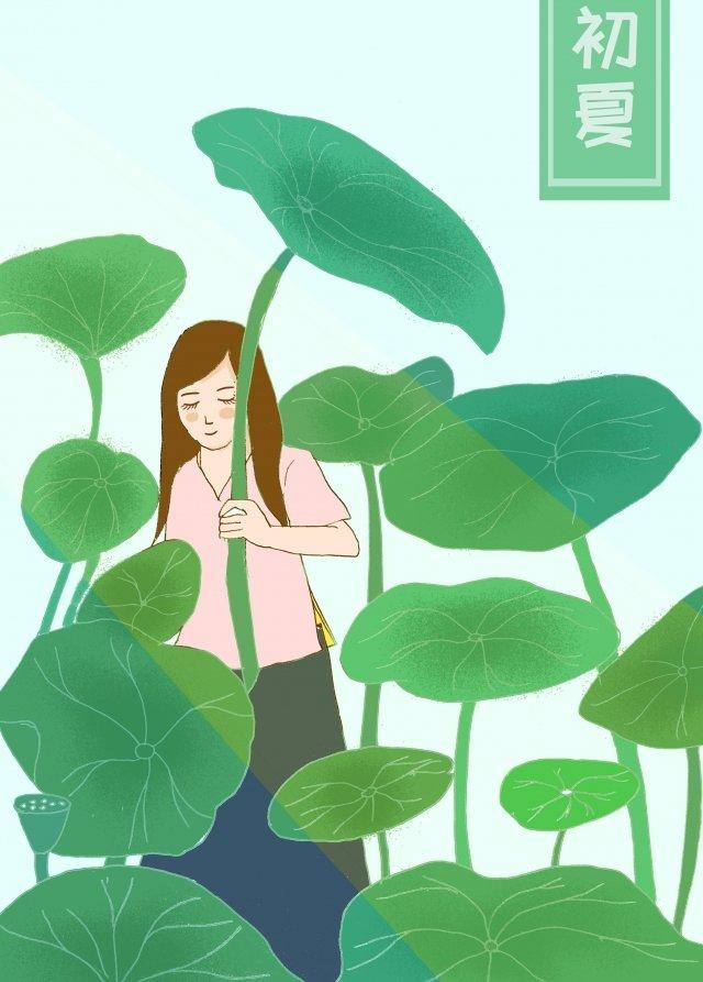綠色荷葉美夏天 插畫素材 插畫圖片
