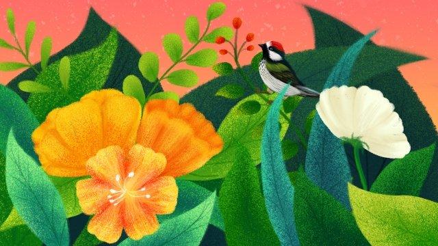 手描きのイラスト花植物 イラスト素材 イラスト画像