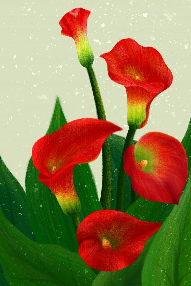 手描きのイラスト花植物 イラスト画像