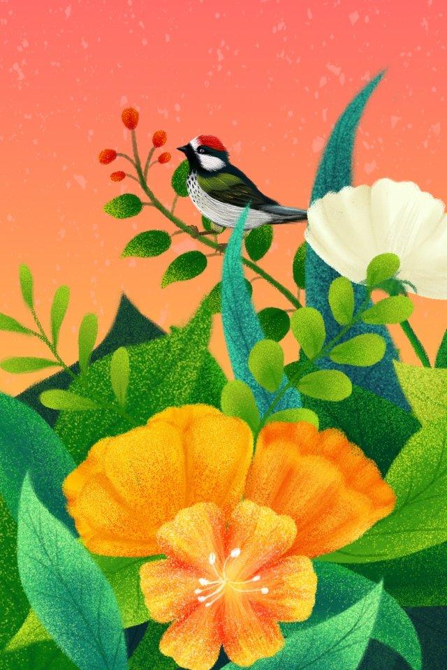 手描きのイラスト植物花 イラストレーション画像