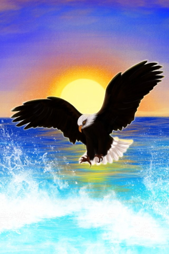 hand painted illustration sea eagle, Ocean, Flying Wings, Seawater illustration image