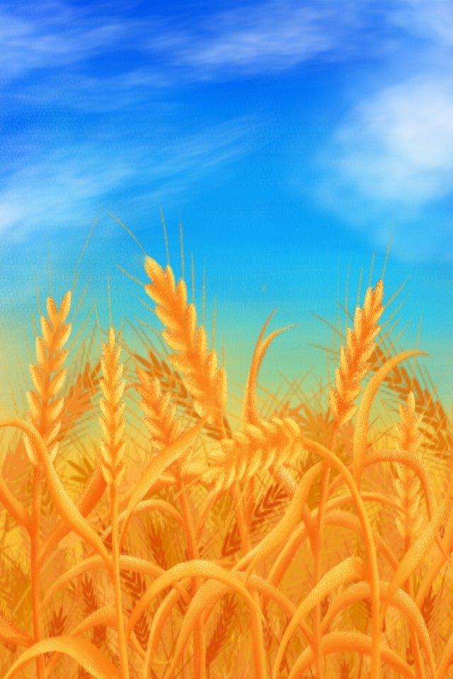 手描きイラスト小麦マンゴー種 イラスト素材