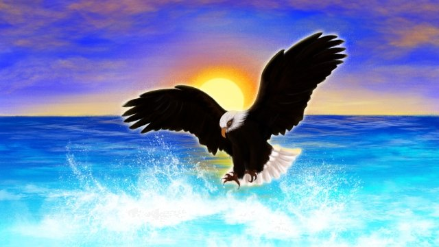 hand painted sea eagle sea surface, Sky, Sun, Cloud illustration image