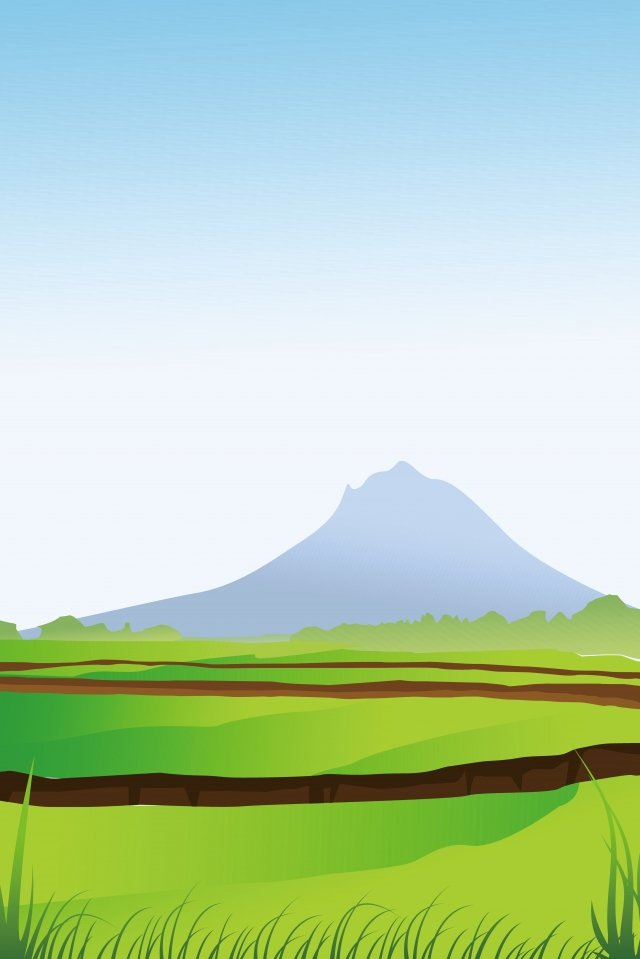 illustration summer field landscape, Wild Scenery, Outdoor Scenery, Grassland illustration image