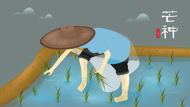 mang illustrator insert seedling farming, Rice, Cartoon Farmer, Twenty-four Solar Terms illustration image