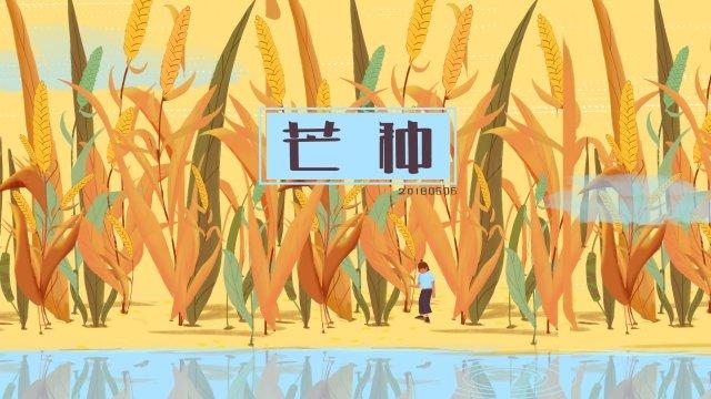 マンゴー種24太陽の用語報酬小麦 イラストレーション画像