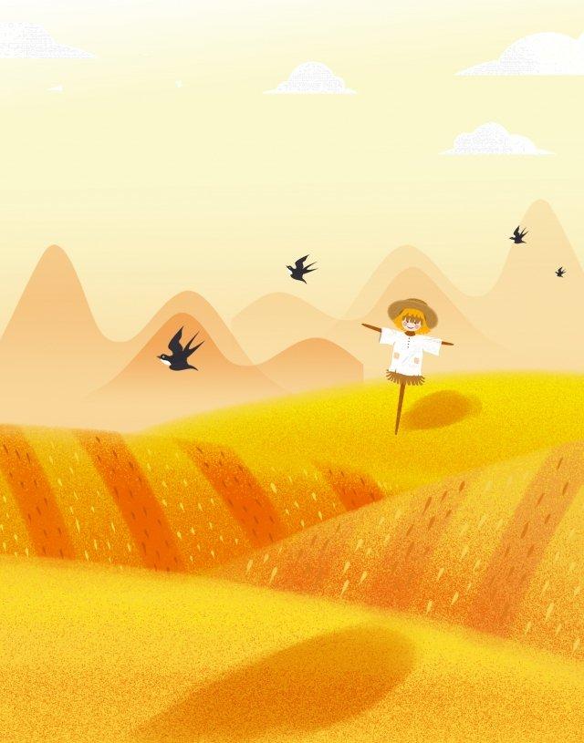 マンゴー種オレンジ水田物語 イラストレーション画像