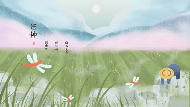 マンゴー種24ソーラー用語ソーラー用語を挿入 イラストレーション画像