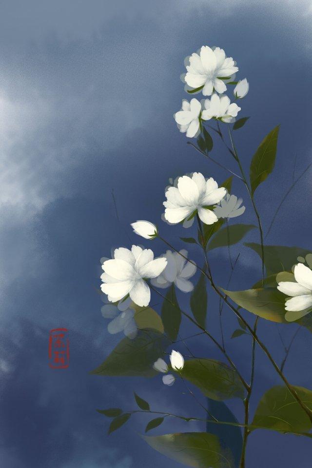 noite início do verão jasmim flor cheia Material de ilustração