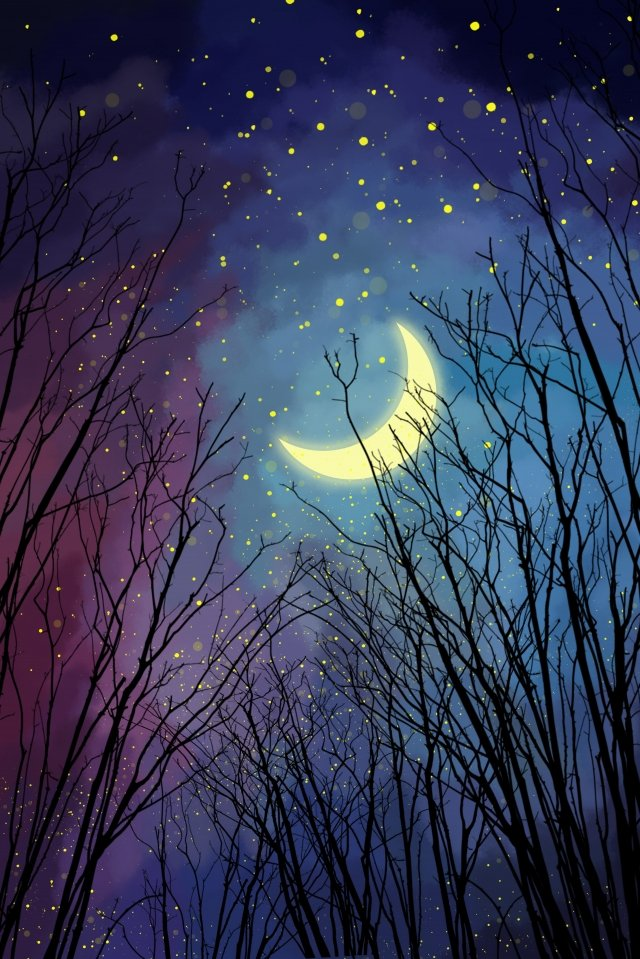 night forest  starry sky illustration image
