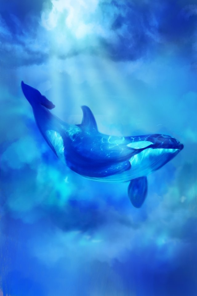 ocean whale dream cure, Mysterious, Azure, Ocean illustration image