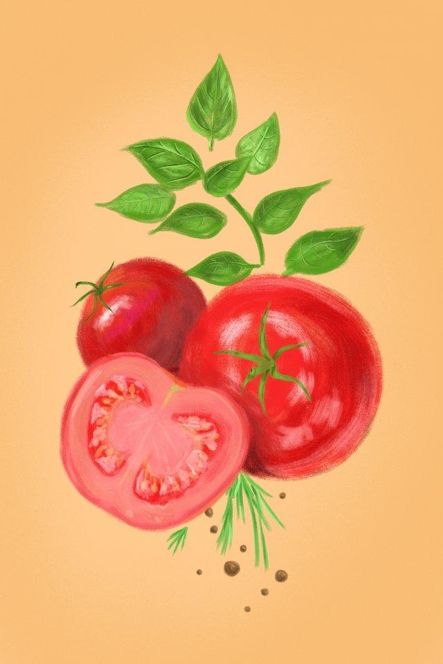 유기농 야채 토마토 토마토 삽화 소재 삽화 이미지