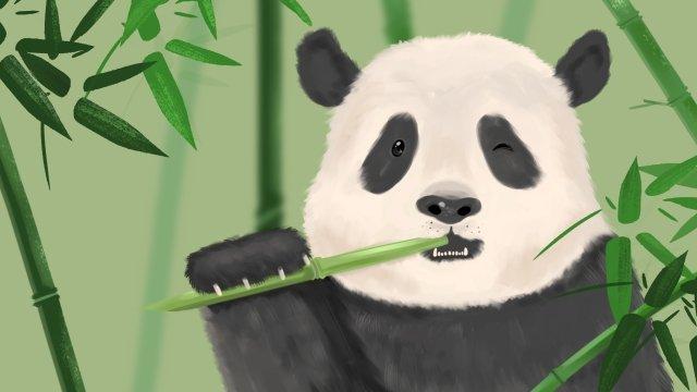 熊貓國寶滾動動物 插畫素材