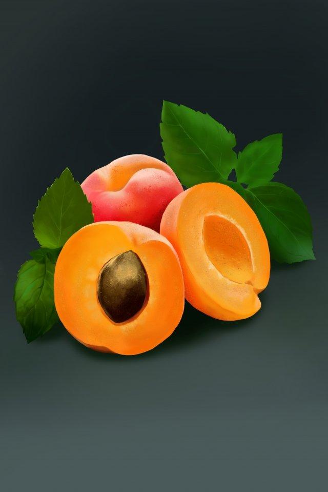 peach peach fruit peach llustration image