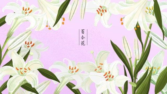 植物の花花の花 イラスト素材
