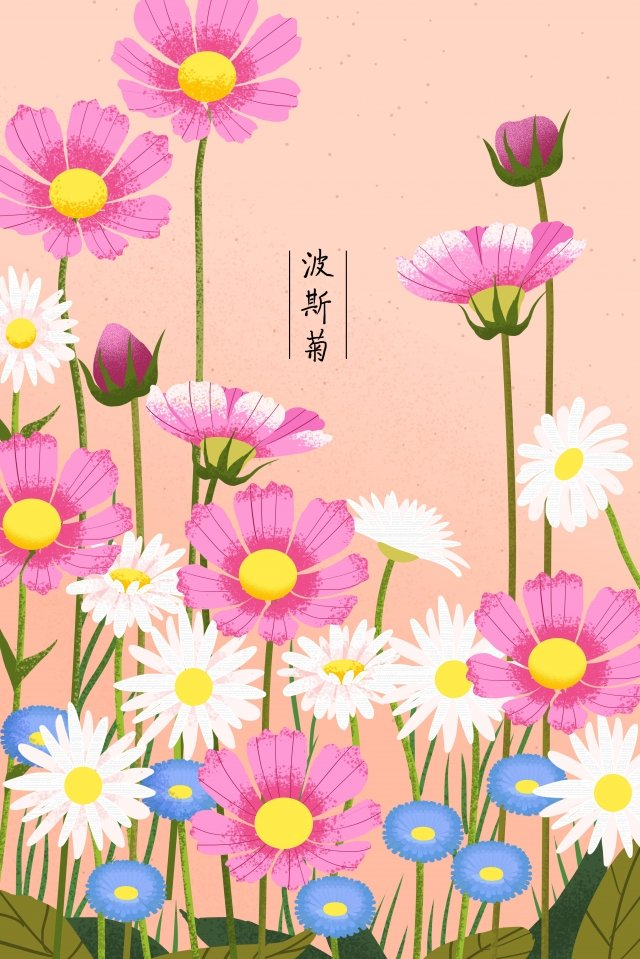 plant flowers flowers flowers, Daisy, Flower, Flowers illustration image
