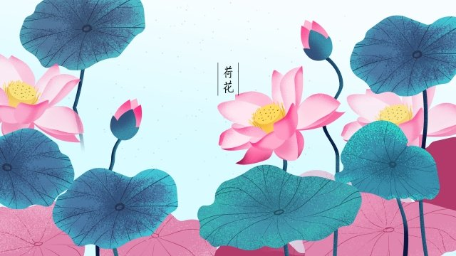 plant flowers flowers flowers, Flower, Lotus, Leaf illustration image
