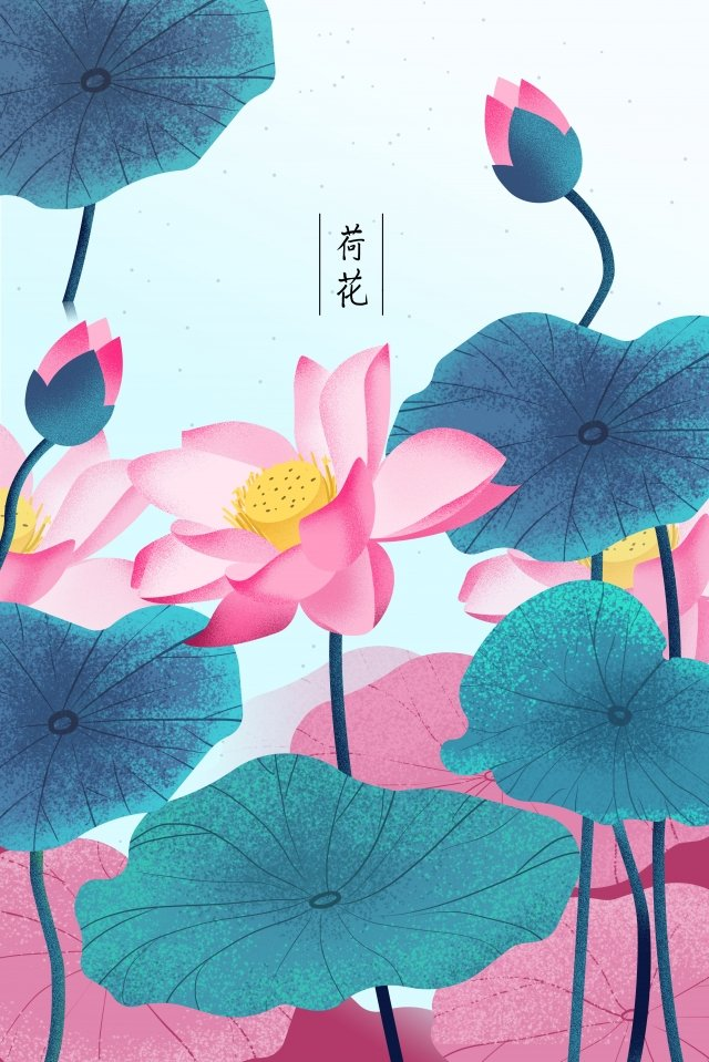plant flowers flowers flowers, Lotus, Flower, Flowers illustration image