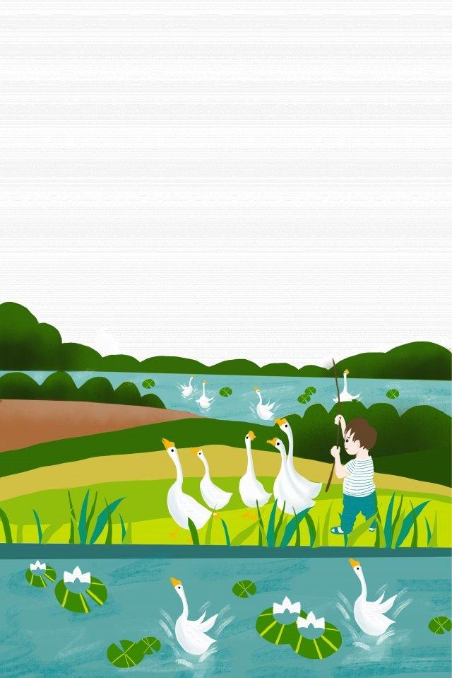 ग्रामीण खेत तालाब किनारे हंस बच्चे चित्रण छवि चित्रण छवि