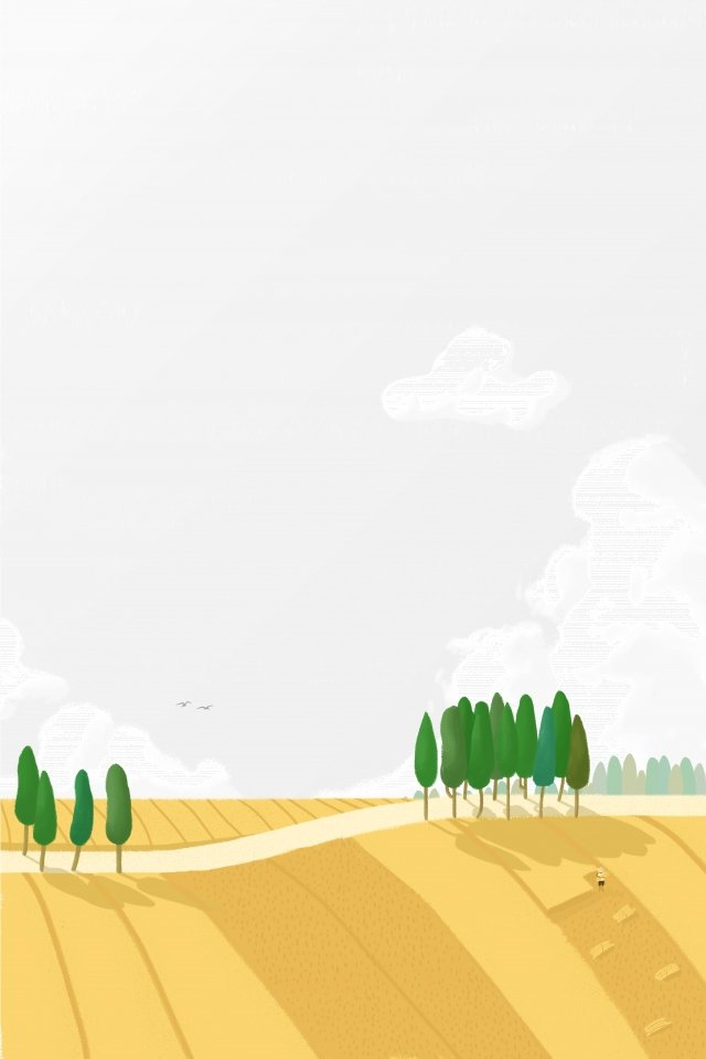 rural wheat field harvest small road llustration image