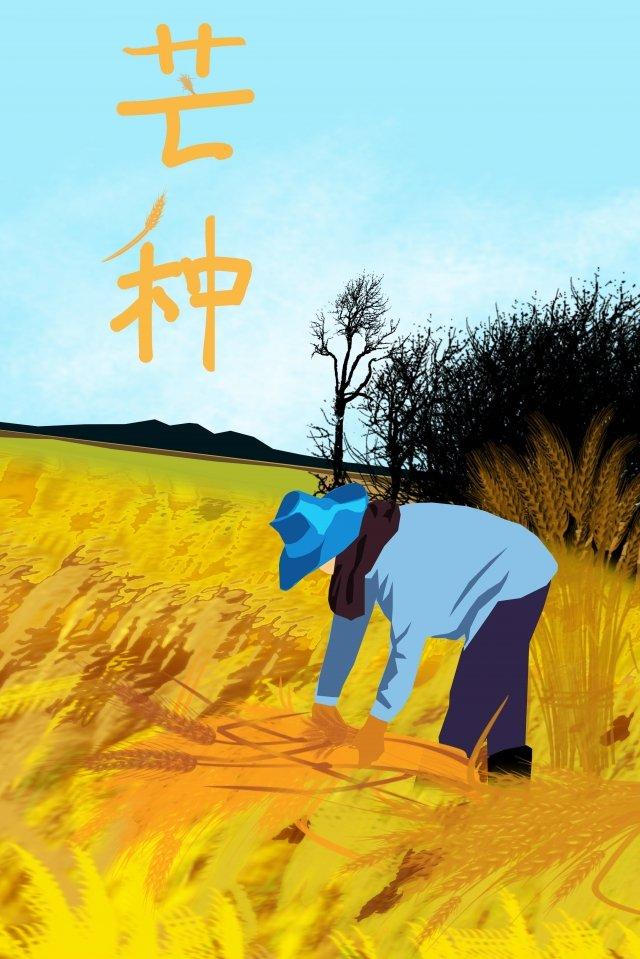 太陽用語マンゴー種水田報酬 イラストレーション画像 イラスト画像