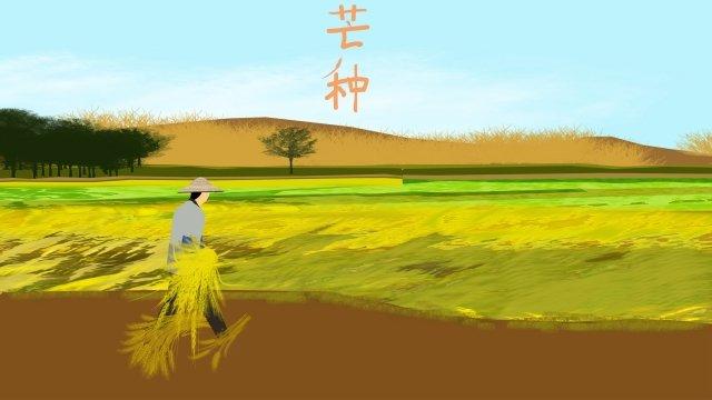 太陽用語マンゴー種水田報酬 イラストレーション画像