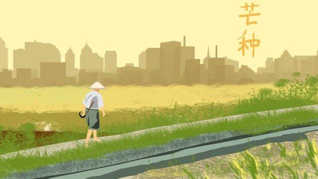 太陽光条件マンゴー種シーズン水田 イラストレーション画像 イラスト画像