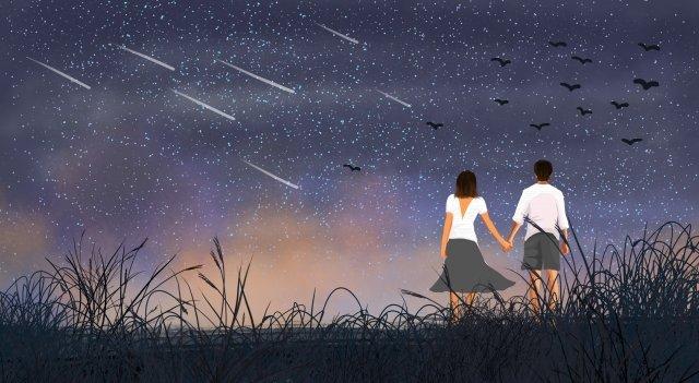 starry sky grassland meteor wild goose llustration image